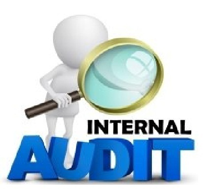 internal-audits-500x500